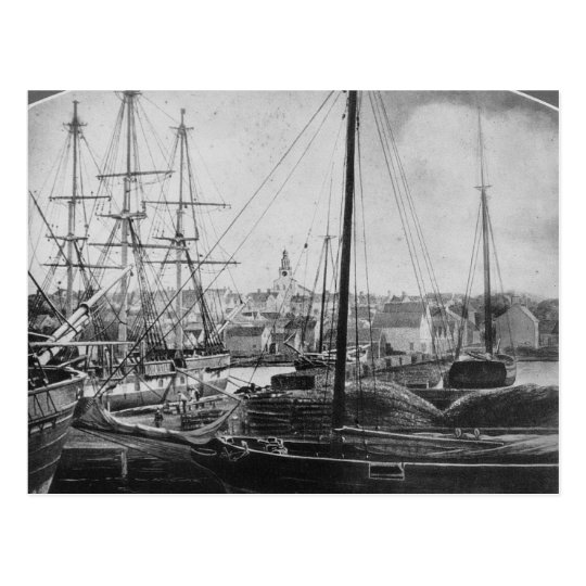 Whaling Port, New Bedford Postcard