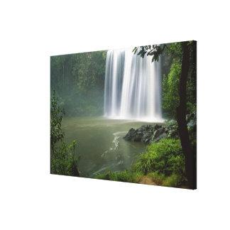 Whangarei Falls, Whangarei, Northland, New Canvas Print