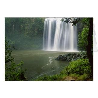 Whangarei Falls, Whangarei, Northland, New Card