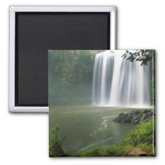 Whangarei Falls, Whangarei, Northland, New Fridge Magnets