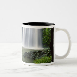 Whangarei Falls, Whangarei, Northland, New Two-Tone Coffee Mug