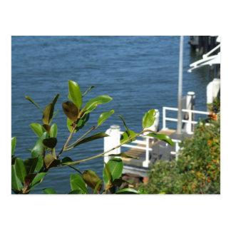 Wharf Postcard