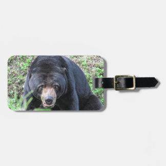 What a Bear! Bag Tag