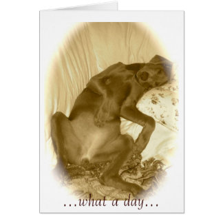 ...what a day... greeting card
