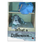 What a Difference A Year Makes!!!! Greeting Cards