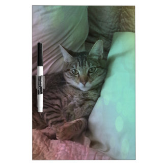 What a Life Overlay Cat Photo Dry-Erase Board