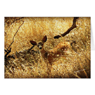 """""""What a Little Doll"""" Fawn Card"""