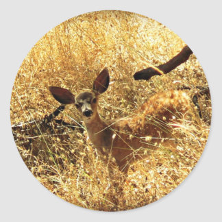 """""""What a Little Doll"""" Fawn Classic Round Sticker"""