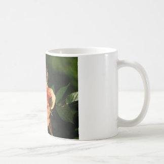 What a Peach 014 Coffee Mugs