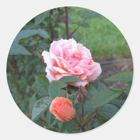 What a Peach  022 Classic Round Sticker