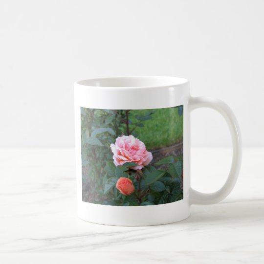 What a Peach  022 Coffee Mug