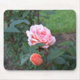 What a Peach 022 Mouse Pad