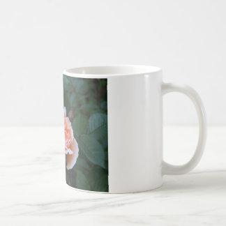 What a Peach 024 Coffee Mugs