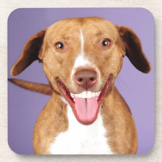 What a smile! drink coasters