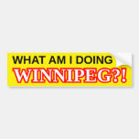 "[ Thumbnail: ""What Am I Doing in Winnipeg?!"" Bumper Sticker ]"