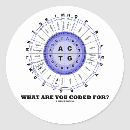 What Are You Coded For? (Amino Acid Wheel) Classic Round Sticker
