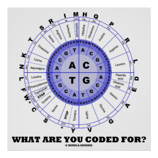 What Are You Coded For? (Amino Acid Wheel) Print