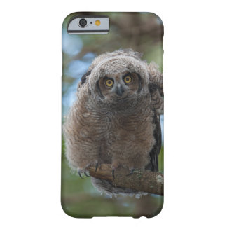 What are you looking at barely there iPhone 6 case