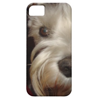 What are YOU Looking At? iPhone 5 Cases