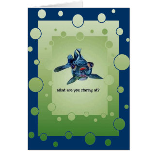 What Are You Staring At? Card
