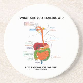 What Are You Staring At Rest Assured I've Got Guts Drink Coasters