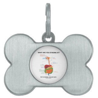 What Are You Staring At Rest Assured I've Got Guts Pet Name Tags