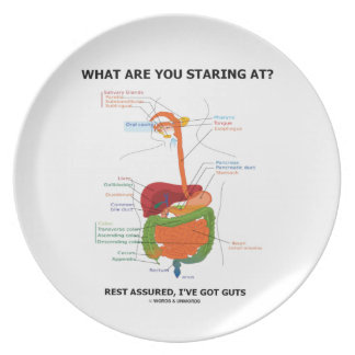 What Are You Staring At Rest Assured I've Got Guts Party Plates