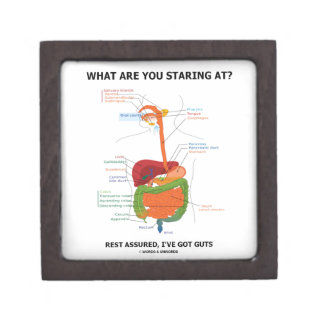 What Are You Staring At Rest Assured I've Got Guts Premium Jewelry Box