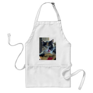 What bird? (A) Adult Apron
