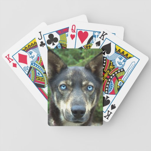 What Blue Eyes You Have! Playing Cards Bicycle Playing Cards