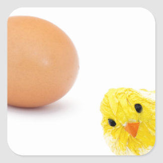 what came first the chicken or the egg? square sticker