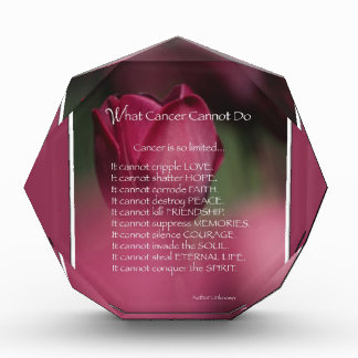 What Cancer Cannot Do, Support and Encouragement Award