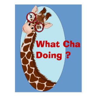 What Cha Doing ? Postcard