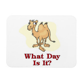 What Day Is It? Magnet