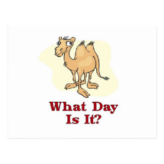What Day Is It? Postcard