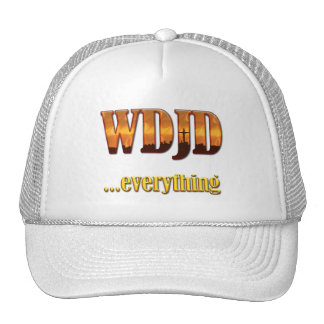 What Did Jesus Do?...Everything Trucker Hat