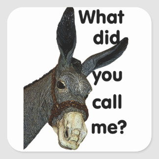 What did you call me? square sticker