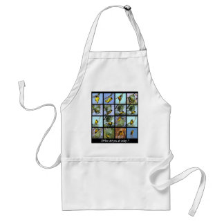 What did you do today - bird and nests adult apron
