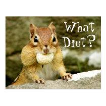What Diet? Chipmunk Postcard