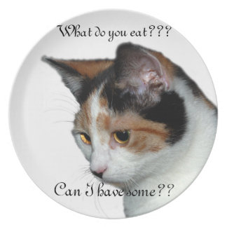 What do you eat plate