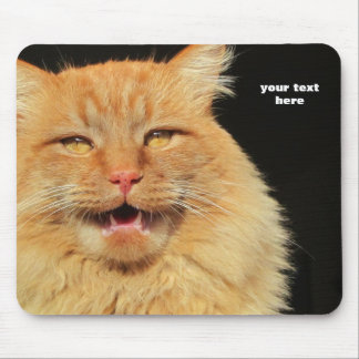 What does the Cat Say? You Decide Mouse Pad