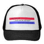 What...don't you understand? trucker hat