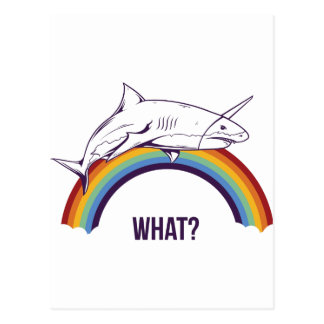 what, fish cool graphic design postcard