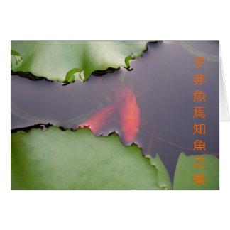 What Fish Enjoy Card