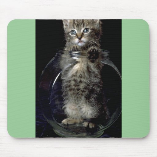 What Fish? Mouse Pad