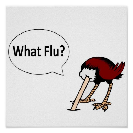 What Flu? Poster