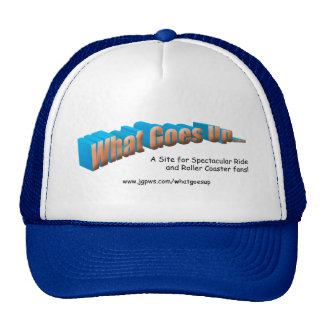 What Goes Up Hat
