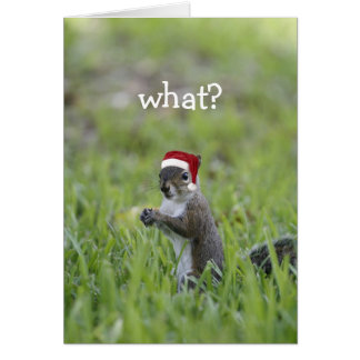 What? Greeting Card