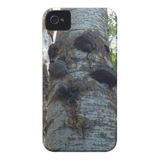 What grows on trees iPhone 4 Case-Mate cases