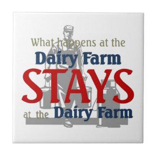 What happen at the dairy farm tile